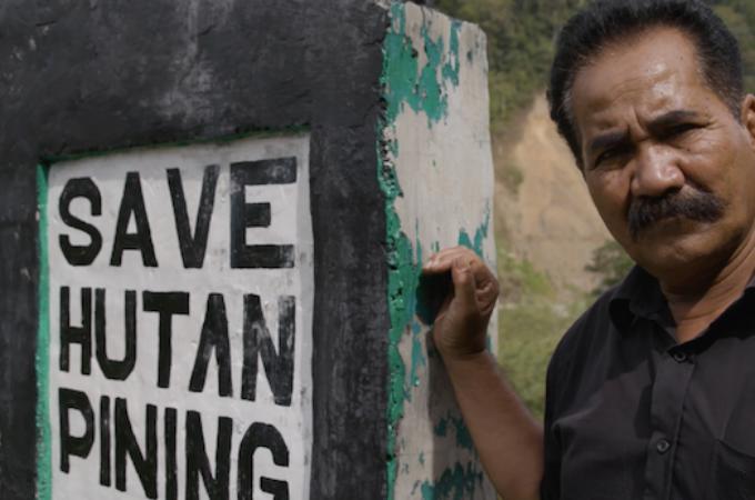 Save Hutan Pining